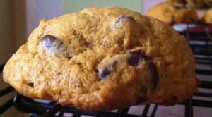 pumpkin chocolate chip cookies 2